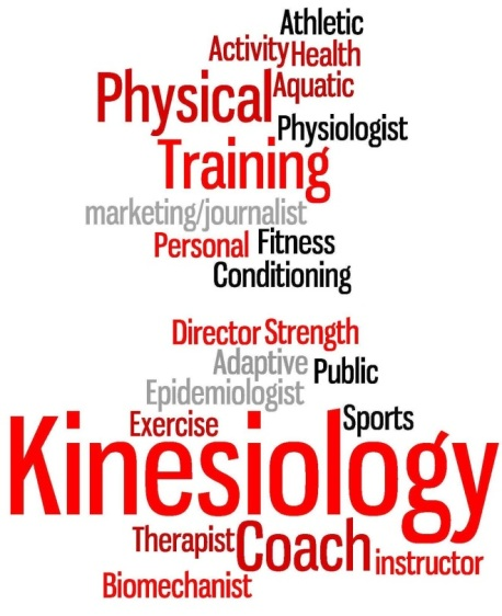 kinesiology-wordle